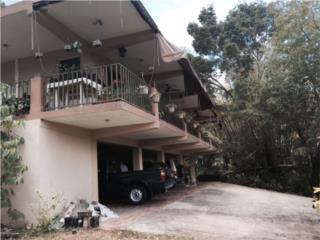 Casa Bo.Collores Carr 924 Humacao,P.R.