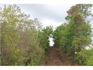 Terreno privado de 2.55 acres
