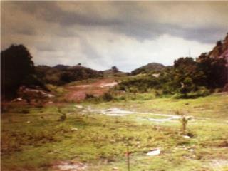 Solar #5 Bo Susúa Alta Sector Río Loco Y