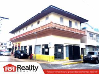 Edificio Comercial, Calle Dolores Cabrera
