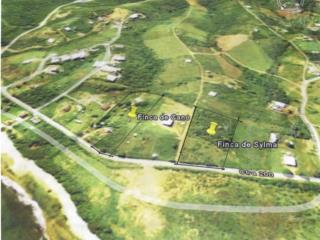 Lot of 5,908 mc in VIEQUES for sale