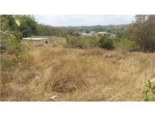 Comunidad Ramal, Bo. Guerrero, Isabela