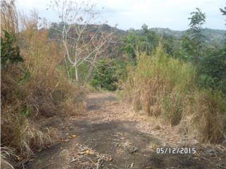 Bo. Rio Grande Carr. 155 Km 42.5 Int.
