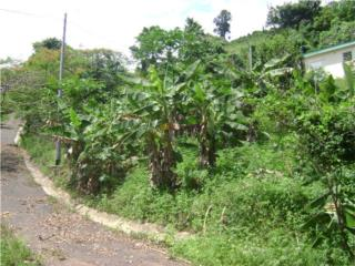 Land for Sale. 93 Acres + House