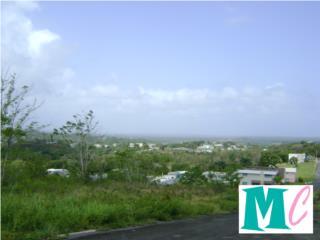 100% Llano!! Vista a El Yunque!