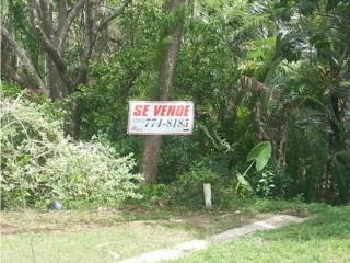 QUINTAS DE DORADO, DOS LOTES DE TERRENO