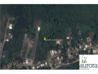 SR 3 Km 114 La Guardarraya Ward