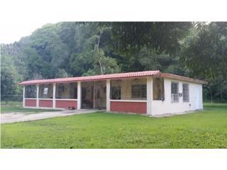 Sector Biafara, Bo. Miraflores