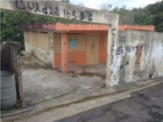 Com Lopez Cases 257 Bo. Guaraguao