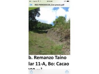 Bo Cacao Remanso  Taino solar 1,200 m2