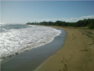 11.26 acres of Ocean front