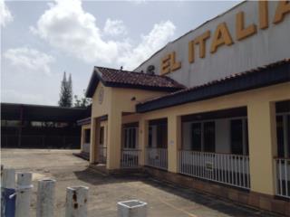 Edificio Comercial Bo. Buena Vista Carr. 167