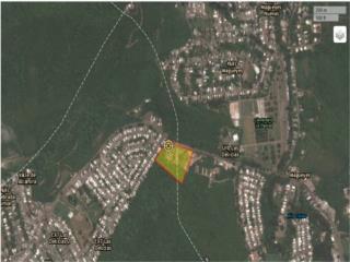 Urbanizacion Las Delicias Solar 19,652 mts2