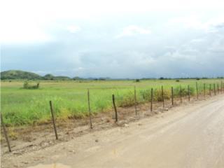 77 cda. Agricolas, Rio Cañas Abajo Juana Diaz