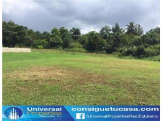 Urb Hacienda Terrazol - Manati - Llame hoy