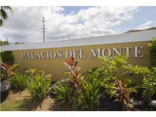 URB. PALACIOS DEL MONTE (1)