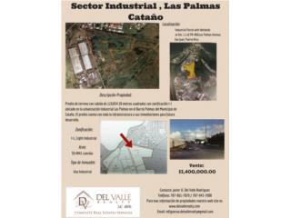 Sector Palmas Ward