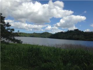 Terreno Frente al Lago la Plata, en Naranjito