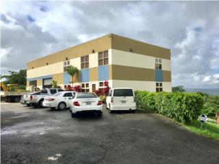 Edificio Comercial,Carr.164, Palmarejo