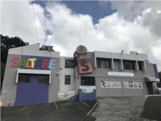 BO. RIOS - LOCAL COMERCIAL CARR. # 1 GUAYNABO