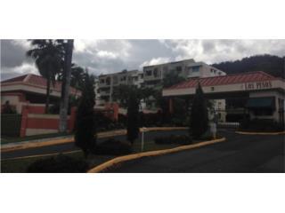 Cond. Los Pinos, Caguas
