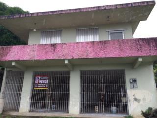 Camino Verde, Carr 794, Aguas Buenas