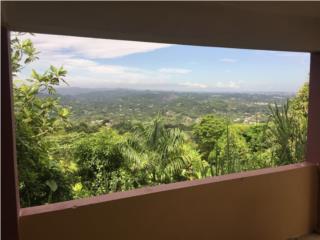 Bo Cacao Preciosa Vista