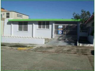 Jardines De Arecibo