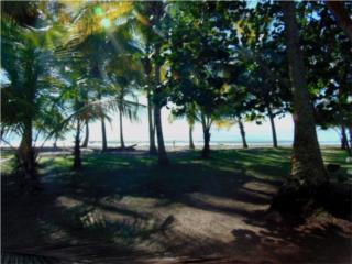 Acceso a la Playa!!--Cond. Mar del Sur