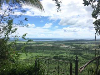 Una Vista Al Mar Caribe Impresionante,