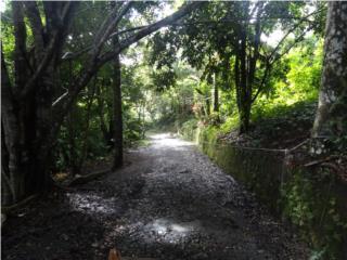 HACIENDA CAYO   (PARADOR) & 21.78  C TERRENO