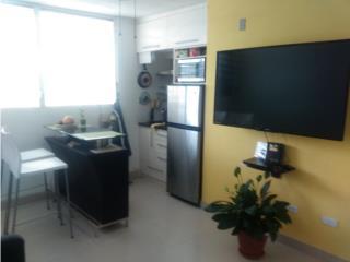 Apartamento, Hato Rey, Centrico 1hab. 1-b,40k