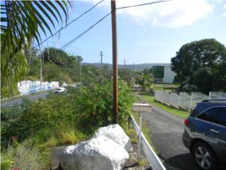 Road #3 Bo. Juan Gonzalez