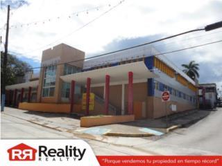 Manati Pueblo, Calle Baldorioty de Castro