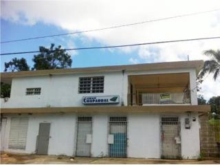 SECTOR CANEJAS - LOCAL Y APARTAMENTOS - $140K