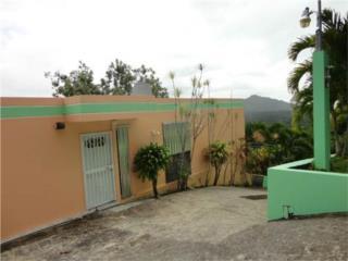Casa con 25 cuerdas en Bo. Monte Llanos