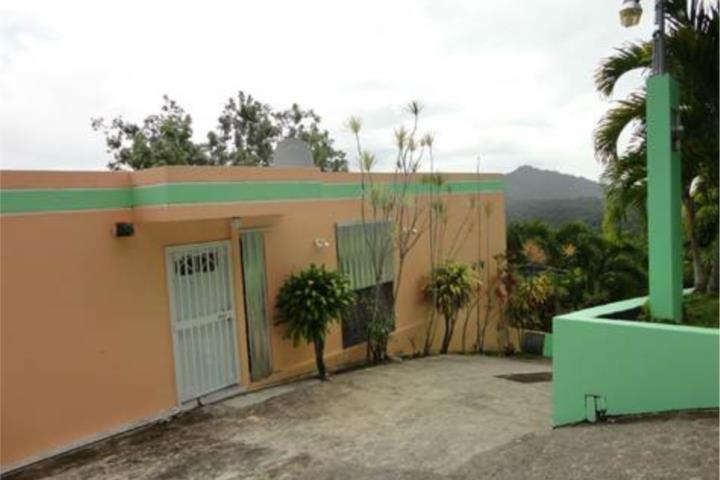 Monte Llanos Puerto Rico