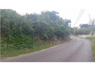 CARRETERA 2 KM 90.INTERIOR.