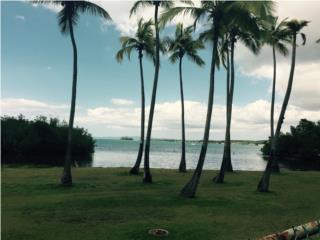 vacaciones eternas en Cabo Rojo