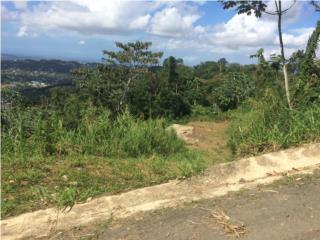 3837m/ hermosa vista Guaraguao Sec Ocasio $19,000