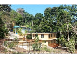 Rincon Hills,Rincon,4y3 con piscina,$199K