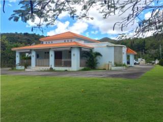 HERMOSA PROPIEDAD DE CAMPO DE GUAYAMA