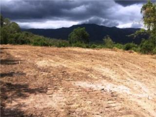 Parcela de terreno en Bo Macaná Guayanilla
