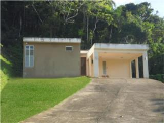 BO. GUARAGUAO (VILLA FORESTAL) * TU GRAN SUBASTA