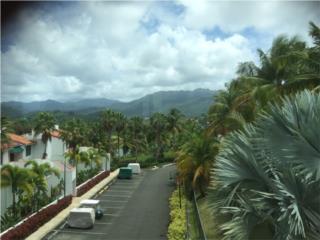 Cond. Rio Mar Village 1/1/2 Vea Video!!!
