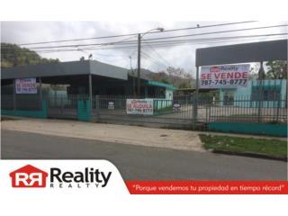 Ave. Muñoz Rivera #100, Cayey