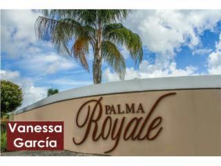 Urb. Palma Royale