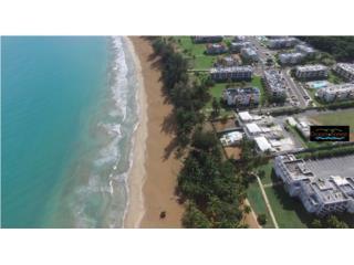 Ocean Forest Beach Community