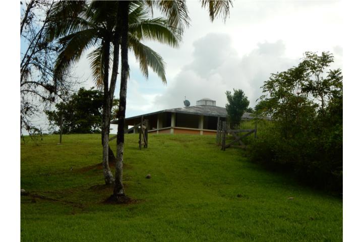 Bayamon Puerto Rico