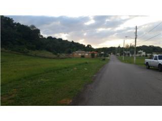 Urbanizacion Hacienda La Sabana